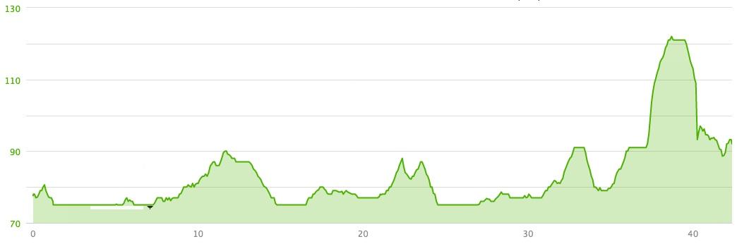 Dénivelé du 42k de Picton - The County marathon